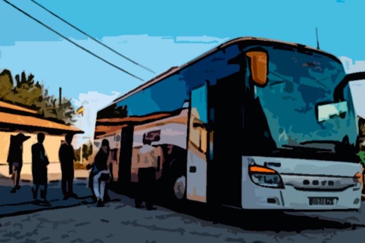 linea autobus almenardesoria